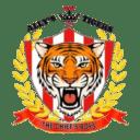 Allys Tigers