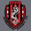 Summerfield Dynamos